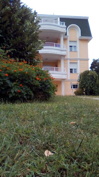 Pogled iz dvorišta na Dom za stare Palma