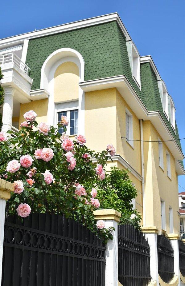 Ruže u domu Palma
