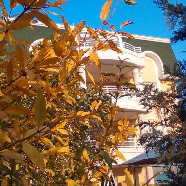 starački dom u kasnu jesen
